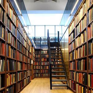 Библиотеки Няндомы